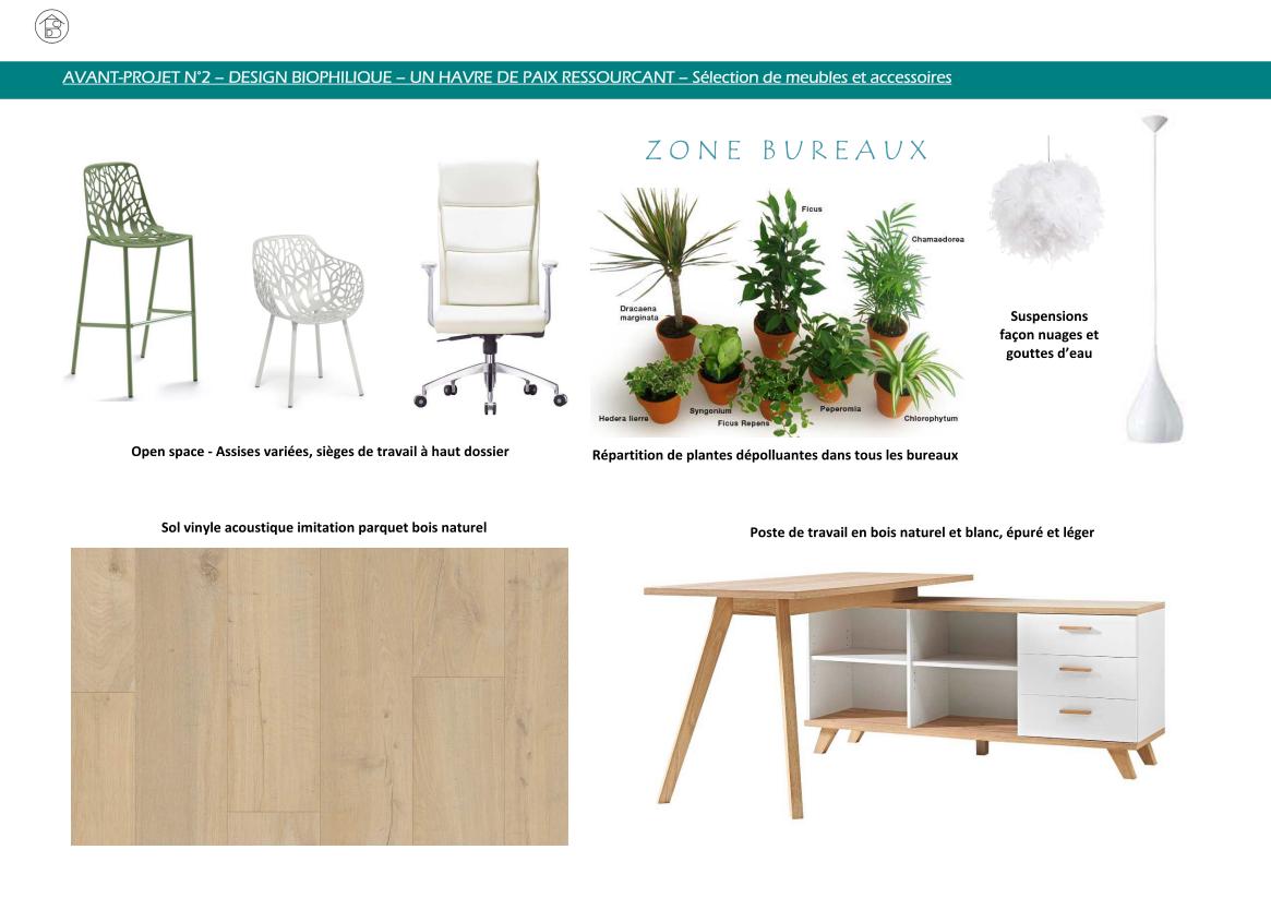 Plateau de bureaux pour entreprise projet 2 concept biophilique - Sélection de meubles et accessoires open-space et bureau direction